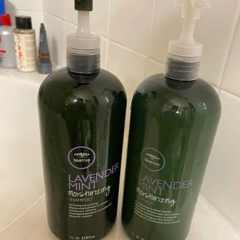 Paul Mitchell Lavender Mint Shamp & Conditioner