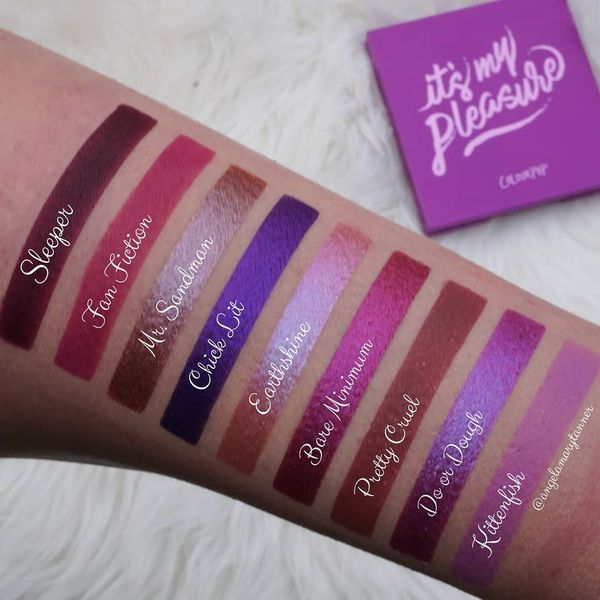 ColourPop Cosmetics 'It's My Pleasure' Palette ($12) Swatches!! I haven't had a chance to use... | Cherie