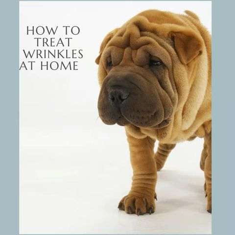 My Tips on Treating Wrinkles at Home