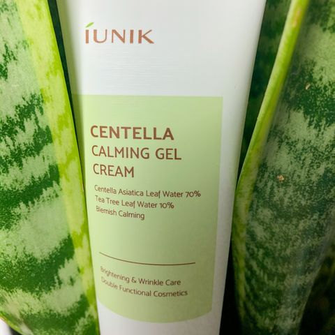 Review: iUnik- Centella Calming Gel Cream 🌿