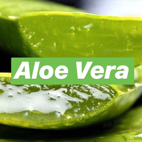 Aloe Vera 101: the Best Uses for Healthy Skin and Risks Involved