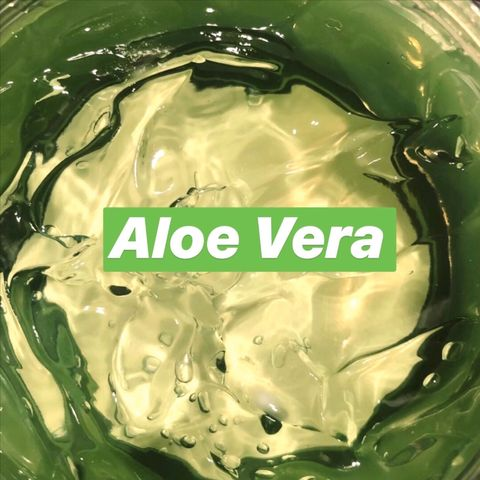 8 Surprising Ways to Use Aloe Vera on Your Hair, Skin, and Body