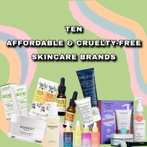 10 Affordable AND Cruelty-Free Brands 🥳‼️