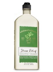 Aromatherapy Stress Relief Eucalyptus Spearmint Body Wash & Foam Bath