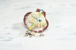 OceanAire Scented Soap in Seashell Dish