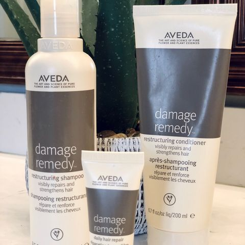 Damaged Hair / Remedy Restructuring  💥