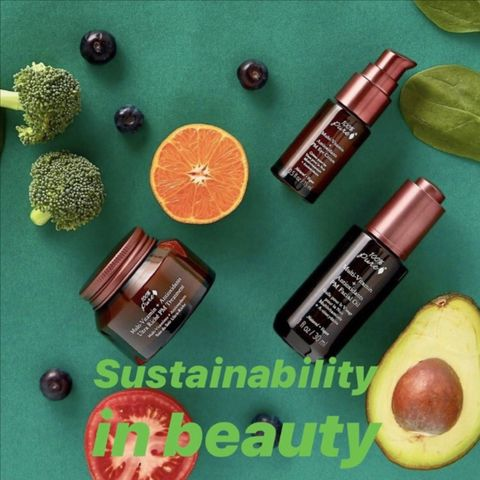Eco-Friendly & Sustainable Beauty: A Guide to the Brands