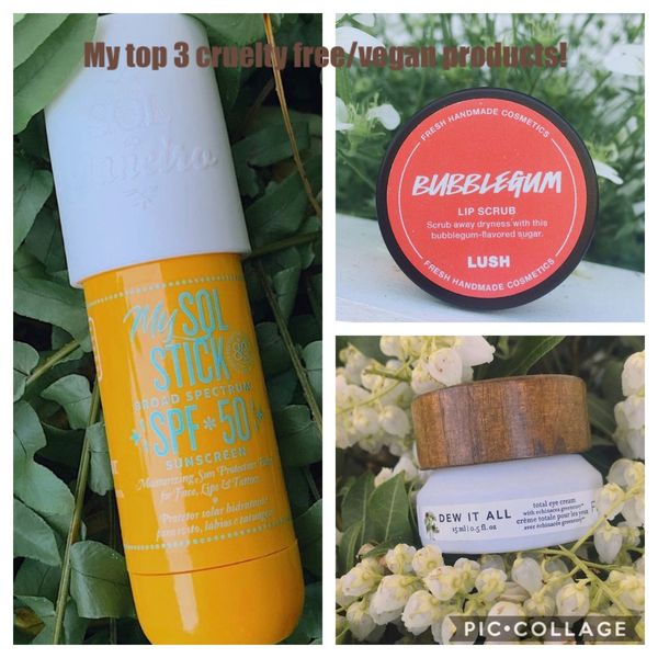 My top 3 favorite cruelty free/vegan products! | Cherie