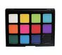 12 Color Picasso Palette Pick Me Up Collection