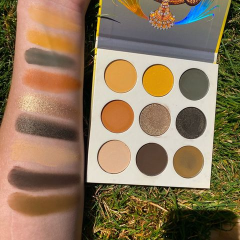 one of the BEST neutral palettes🌾🦓