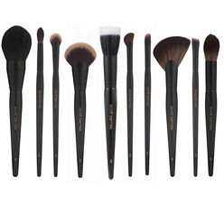 The Complete Pro Series Set 10 Brushes