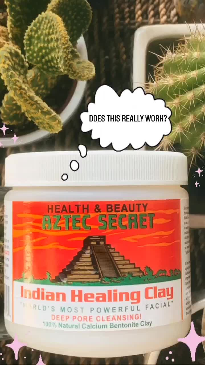 Is It Worth The Hype? ✨ Indian Healing Clay Mask